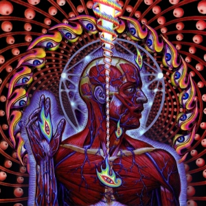 lateralus-51ffb2d506f20